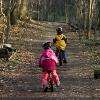 kita, erfahrung, bericht, Hausaufgaben im Wald. Eine Familie berichtet