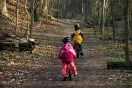 Kita, erfahrung, berichte, Hausaufgaben im Wald. Eine Familie berichtet
