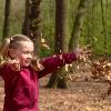 Kita, Pädagogisches Profil, Waldkindergarten